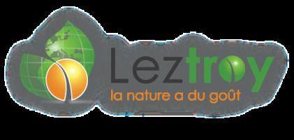 leztroy-logo
